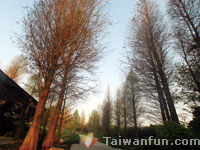 Tianwei: The Sweet Garden that exudes the wonderful fragrance of joy and romance